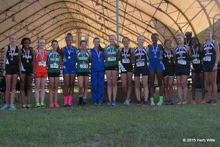 Top 15 boys at FHSAA's 2015 2A District 2 Cross Country Meet