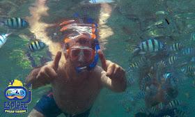 wisata dan aktivitas snorkeling di pulau tidung