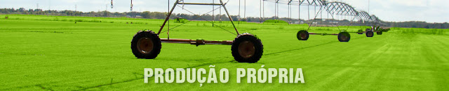 http://gramasbrasil.com.br/capa