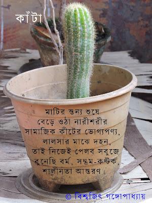 bengali poem: cactus