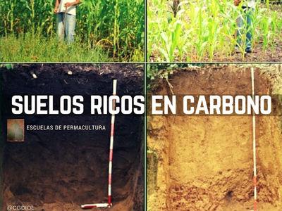 Esta imagen muestra la diferencia entre un suelo rico en carbono y uno que no!