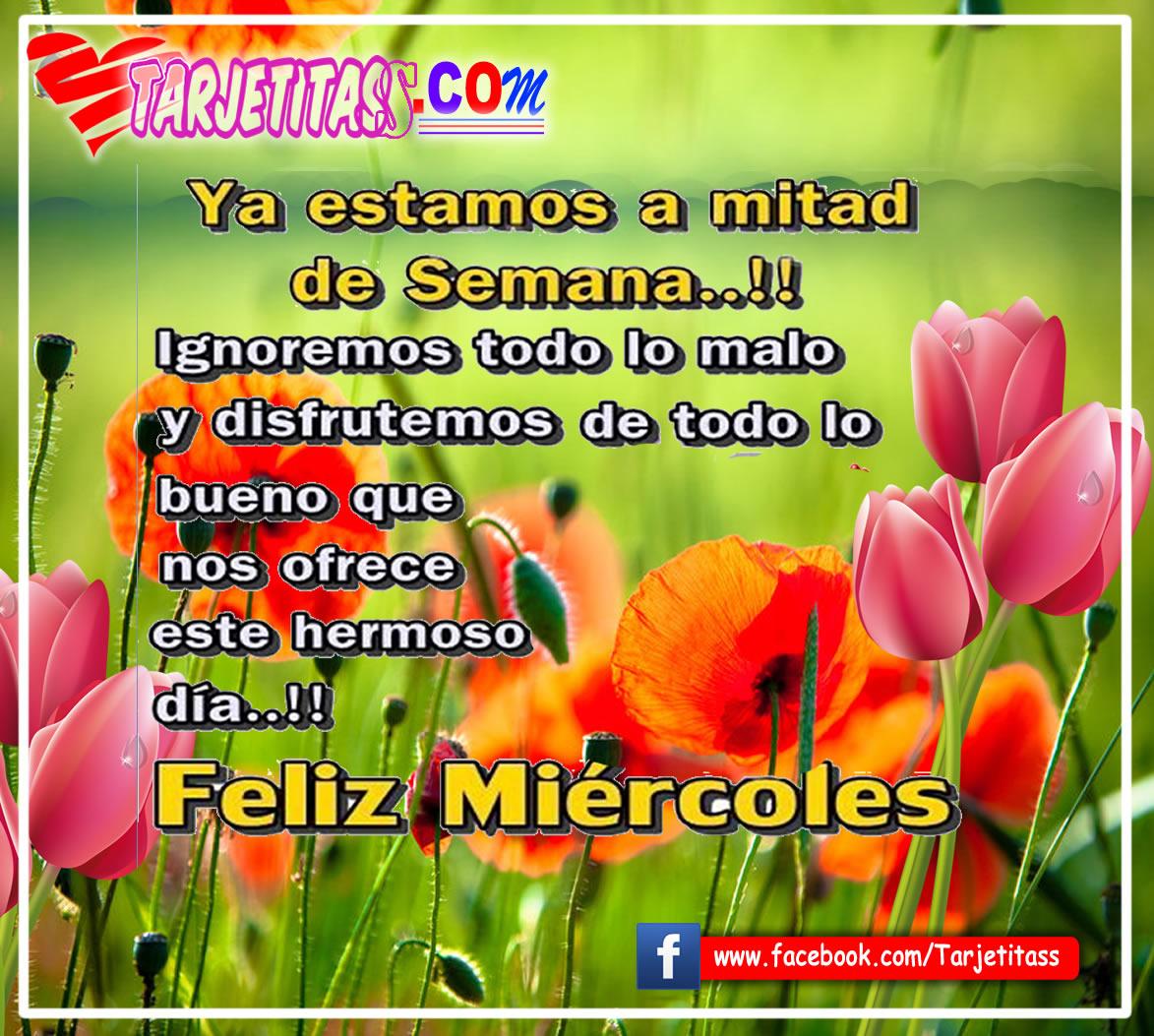 Image result for imagen feliz miercoles dios te bendiga