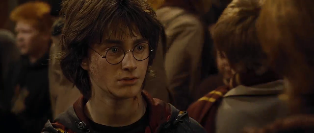 harry potter and the goblet of fire download in hindi 480p