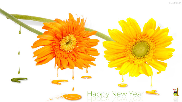 Happy New Year 2016 Flowers Images, Pictures and Wallpapers