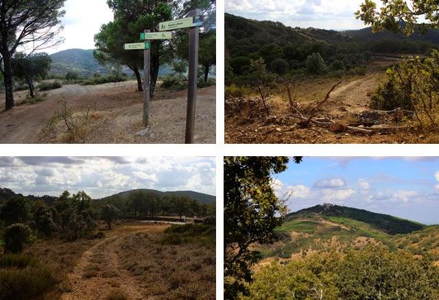 La bajada del Cerro de Tentudía, camino de la Cumbre de los Bonales, que a la vuelta se convirtió en subida