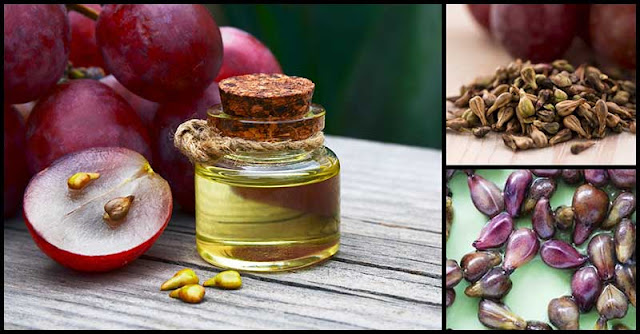 Can Grape Seed Extract Improve Our Health?