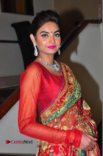 Model Sharon Fernandes Stills in Red Saree at Trendz Exhibition Launch  0016.JPG