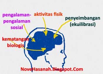 Piaget dalam teori perkembangan kognitifnya mengidentifikasi 4 faktor yang sangat berpengaruh, yaitu: (1) kematangan biologis; (2) aktivitas fisik; (3) pengalaman-pengalaman sosial; dan (4) penyeimbangan (ekuilibrasi). Kesemua faktor ini saling berinteraksi dan mempengaruhi perkembangan kognitif dengan mengubah proses-proses berpikir