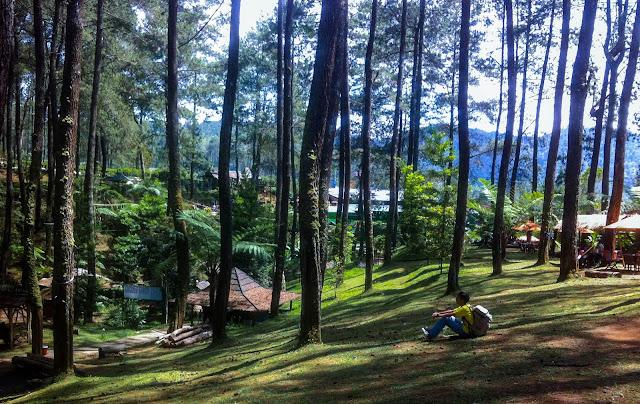 Terminal Wisata Grafika Cikole - Resort Hobbit di Lembang  !