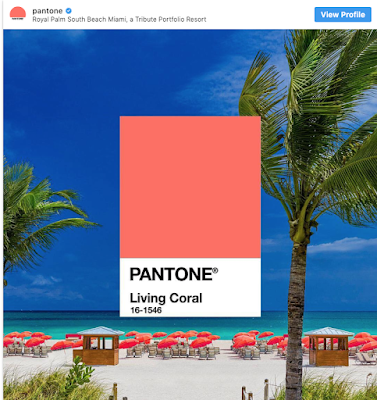 color of the year according to pantone, living coral.