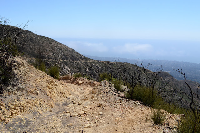 rocky trail winding downhill