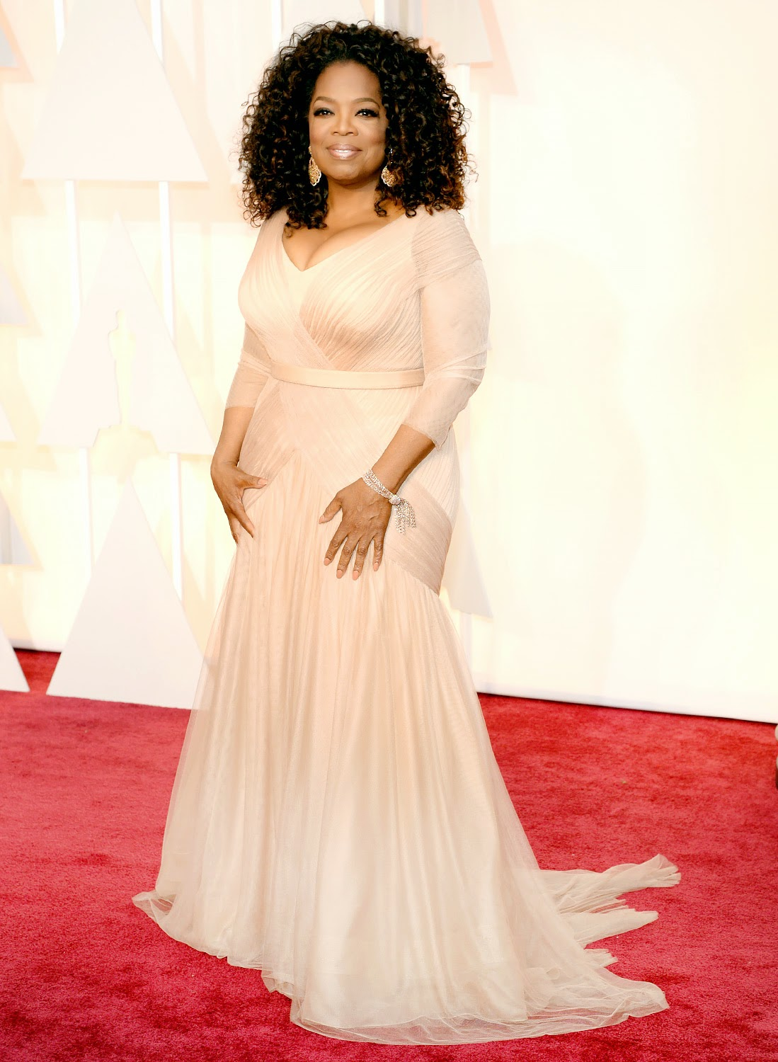 Oprah Winfrey flaunts curves in a Vera Wang gown at the 2015 Oscars in Hollywood