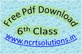 NCERT Solutions for Class 6 PDF