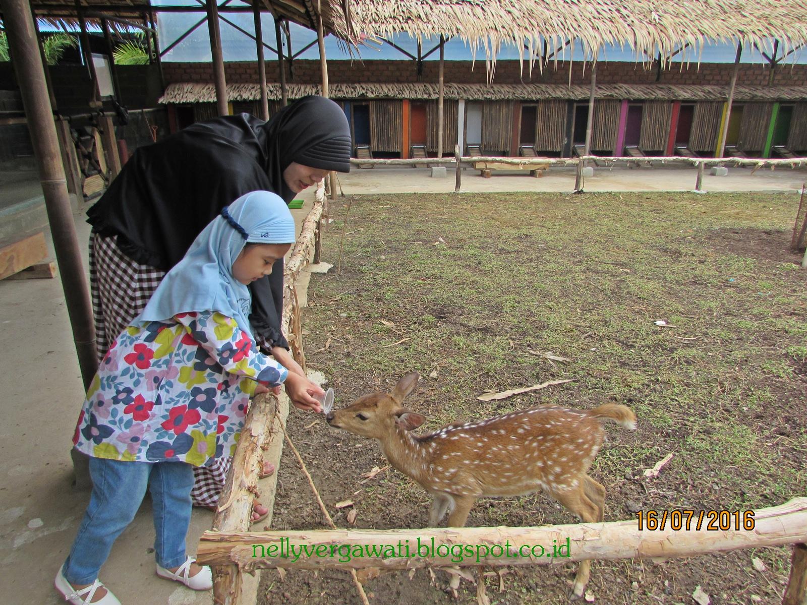 Bicik Story: Explore 'Bird Park Palembang'
