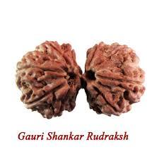 गौरी शंकर रुद्राक्ष कवच