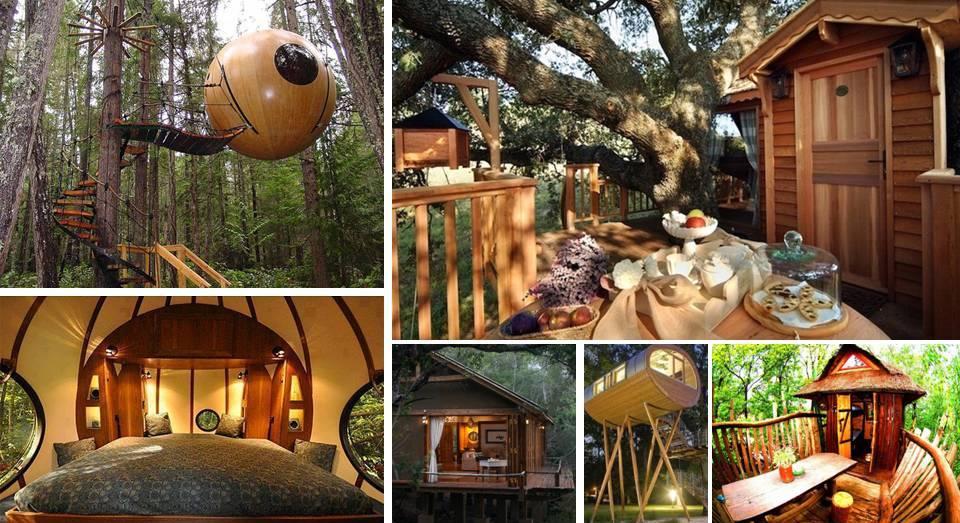 10%2BDIY%2BLuxury%2BTree%2BHouses 10 DIY Luxury Tree Houses Interior