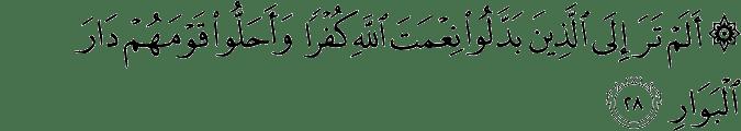 Surat Ibrahim Ayat 28