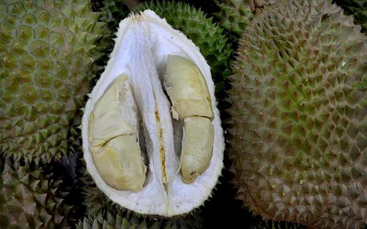 Durian Black Pearl