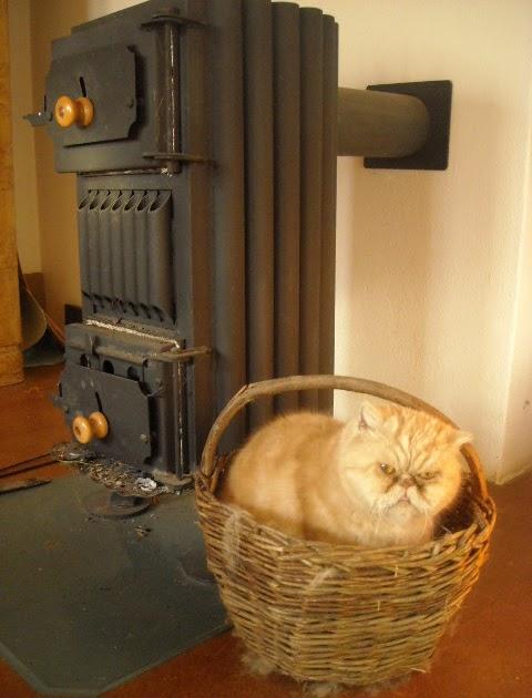 niniopera jak jste na tom vy p tel. Black Bedroom Furniture Sets. Home Design Ideas