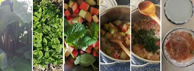 Zubereitung Rhabarber-Zitronenmelisse-Konfitüre