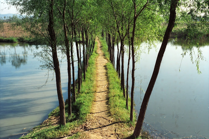 Jinan, Queshandongcun, © L. Gigout, 1990