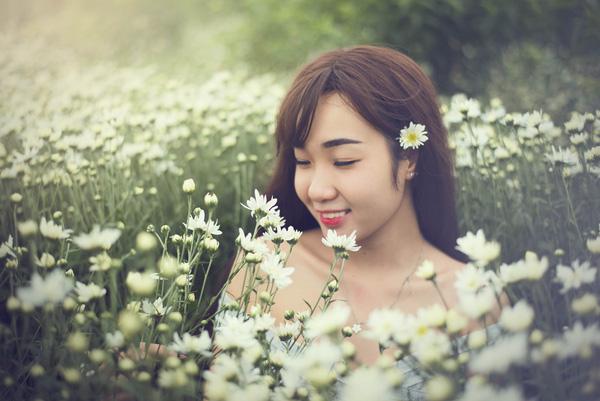 Những câu thơ về Cúc Họa Mi hay trong mùa đông yêu nhau