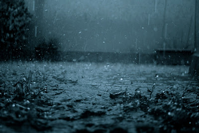 Rain Drops Mind Refreshing Wallpapers