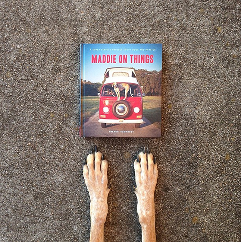 maddie on things, the book