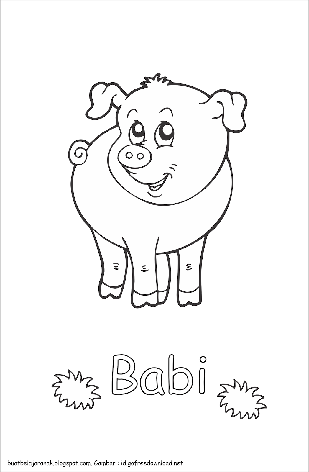 74 Gambar Babi Untuk Diwarnai Kekinian Infobaru