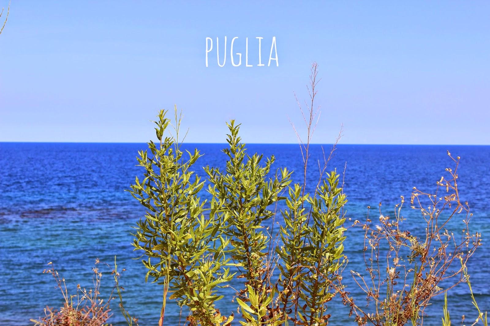 http://scentedlittlepleasures.blogspot.it/2014/09/scorci-di-puglia-e-un-trasloco-imminente.html