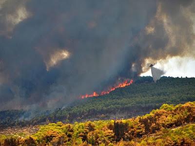 Καίγεται η Ζάκυνθος – Στέλνουν 20 πυροσβεστικά, Στρατό και ελικόπτερα
