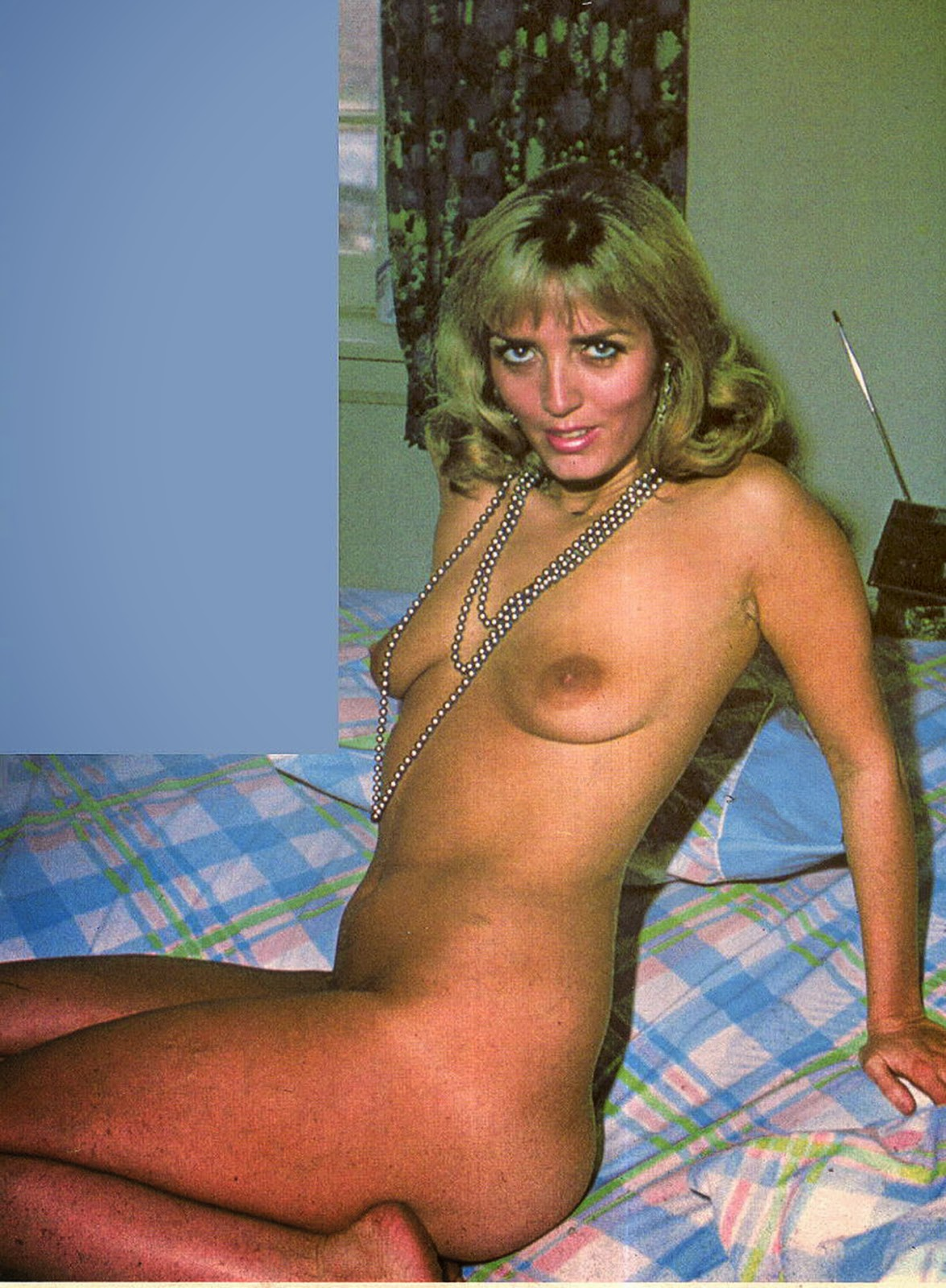 1976 jennifer welles of a young american house wife 2