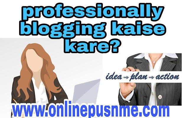 Proffesionally blogging kaise kare?