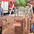 Capivara invade quintal de residência e surpreende moradores no Jardim Alvorada