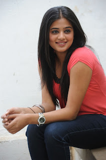 Priyamani HD wallpapers 2013
