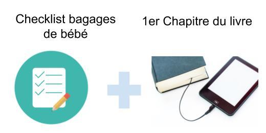 Checklist bagages de bébé et 1er chapitre à télécharger au format pdf