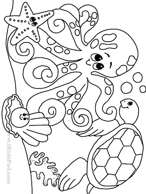 Ocean Animal Coloring Pages Marine Animals Coloring Sheets