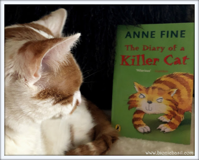 Amber the cat reading the diary of a killer cat for her book review post at bionic basil