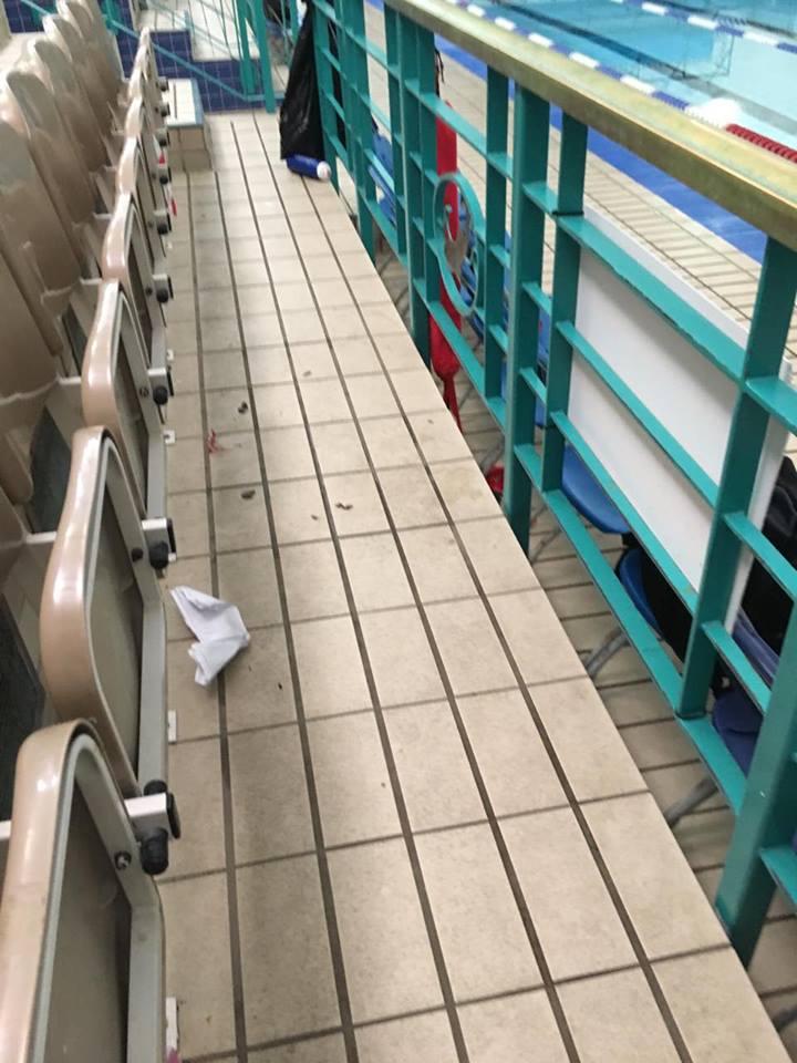long eaton swimming club open meet 2016