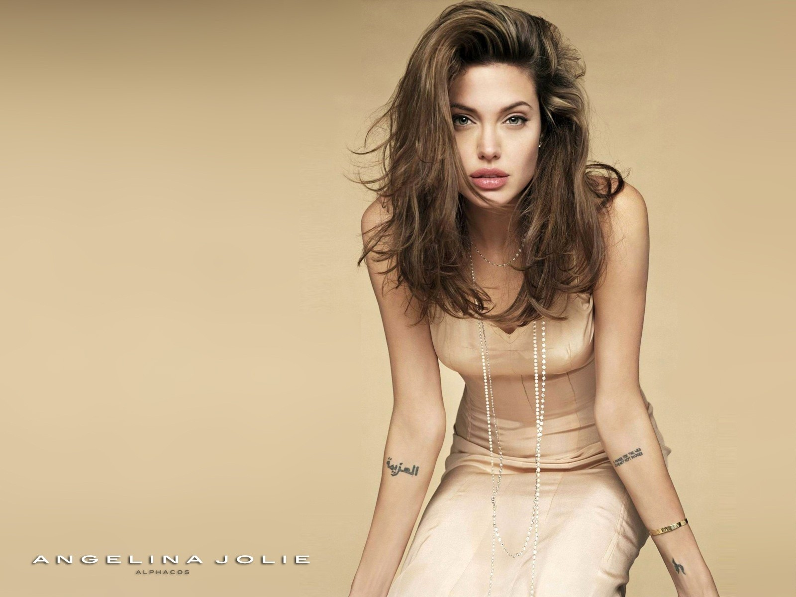Top Hottest Models: Angelina Jolie (2 Pics