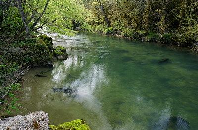 Springtime greenery along Semine river