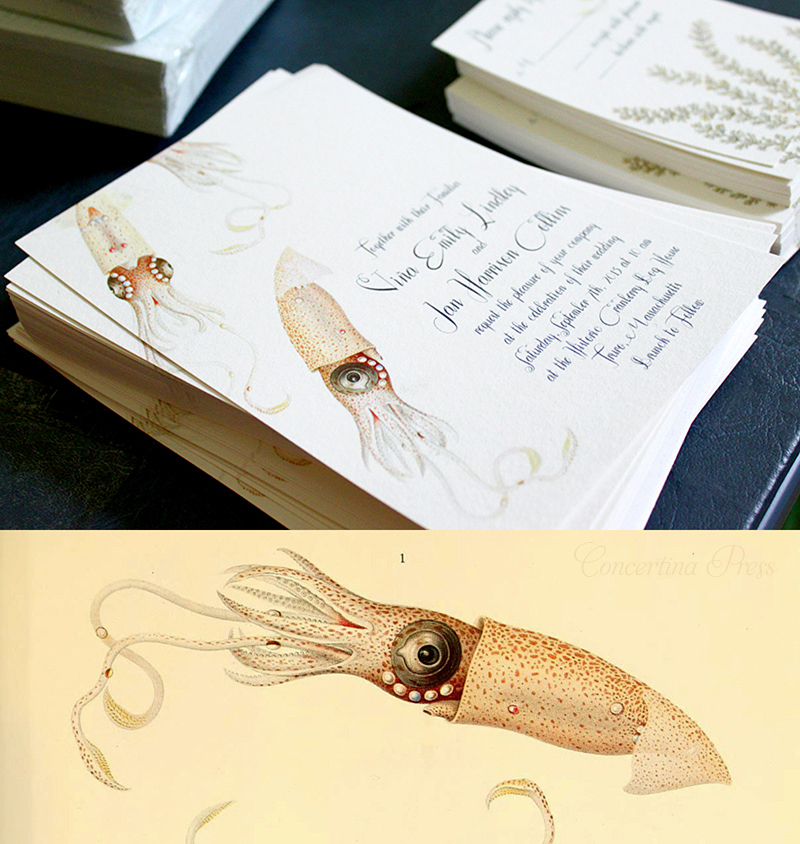 Wedding Invitations for Scuba Divers from Concertina Press - Squid