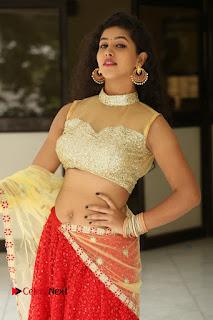 Actress Pavani Latest  Pictures in Half Saree at Campus Ampasayya Press Meet  0119.JPG