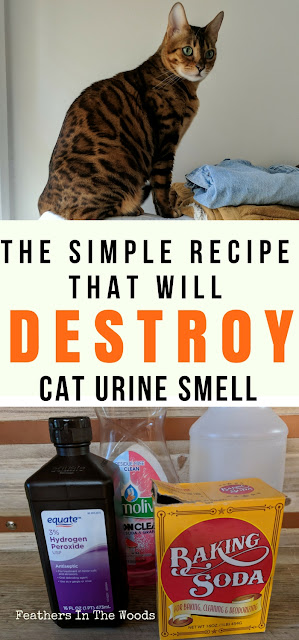 homemade cat odor remover