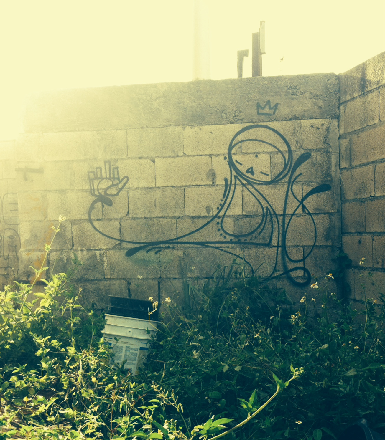 matthew reid hswam graffiti puerto rico