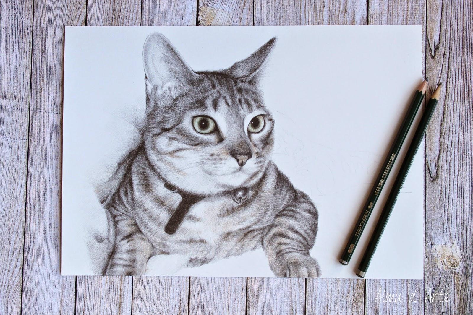 Retrato de un gato a lápiz