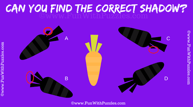 Answer of Picture Shadow Brain Teaser for Kids