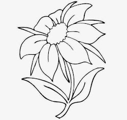 flowers flower draw easy drawings drawing coloring