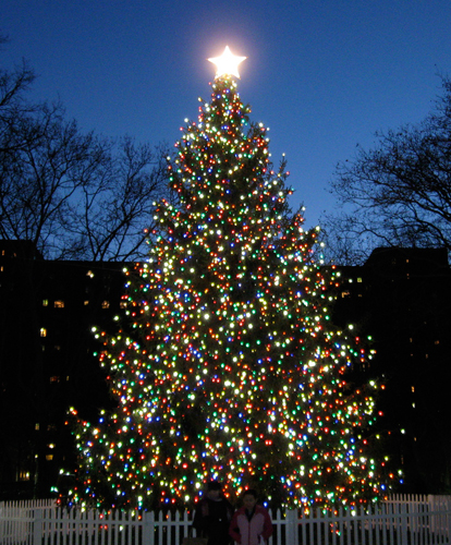 Where Did The Christmas Tree Tradition Originate: The Stuyvesant Town Report: Stuy Town's Impressive