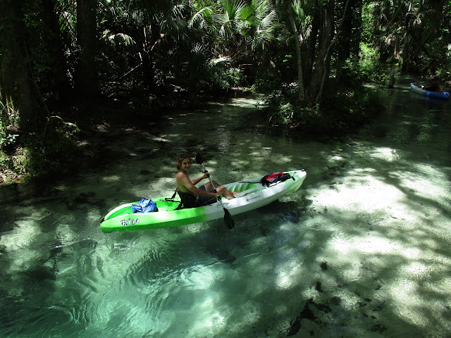 Take a great break from the heat of the theme parks and do an Orlando kayak tour with Central Florida Nature Adventures at www.kayakcentralflorida.com